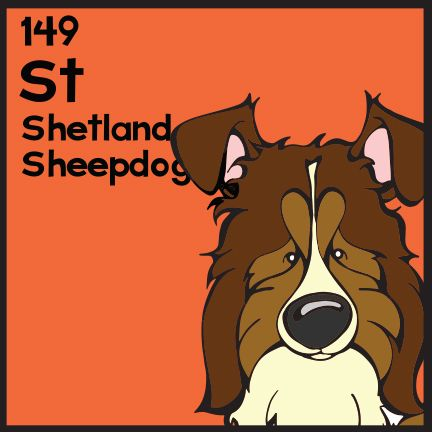 The 149th Elemutt of The Dog Table is the Shetland Sheepdog.  The Dog Table Poster features illustrations of 186 dog breeds. Dogs are organized in a similar layout and structure to the Periodic Table.  #dogsofpinterest #ShetlandSheepdog BUY THE DOG TABLE POSTER  http://thedogtable.com