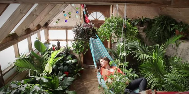 Swoon....I would love a wonderful greenhouse like this, particularly with a hammock!