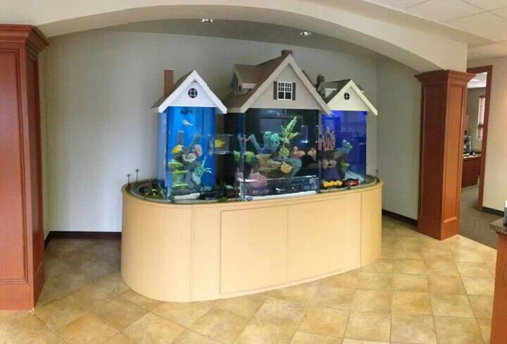 fish tank house ForFish Tank House