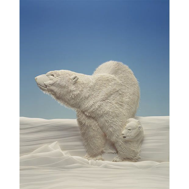 polarbearsos.org