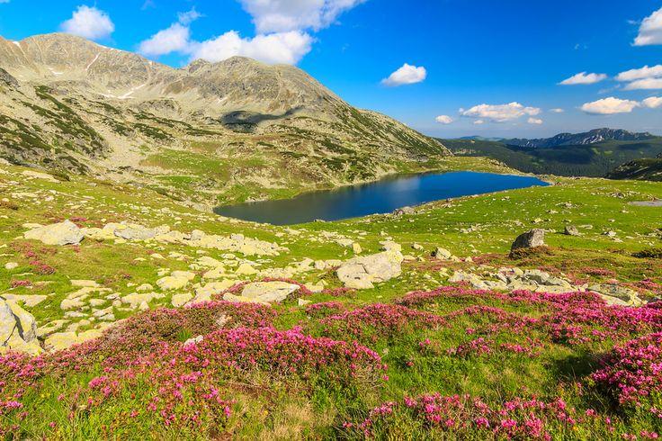 Peleaga, Romania (quick hike to the peak)