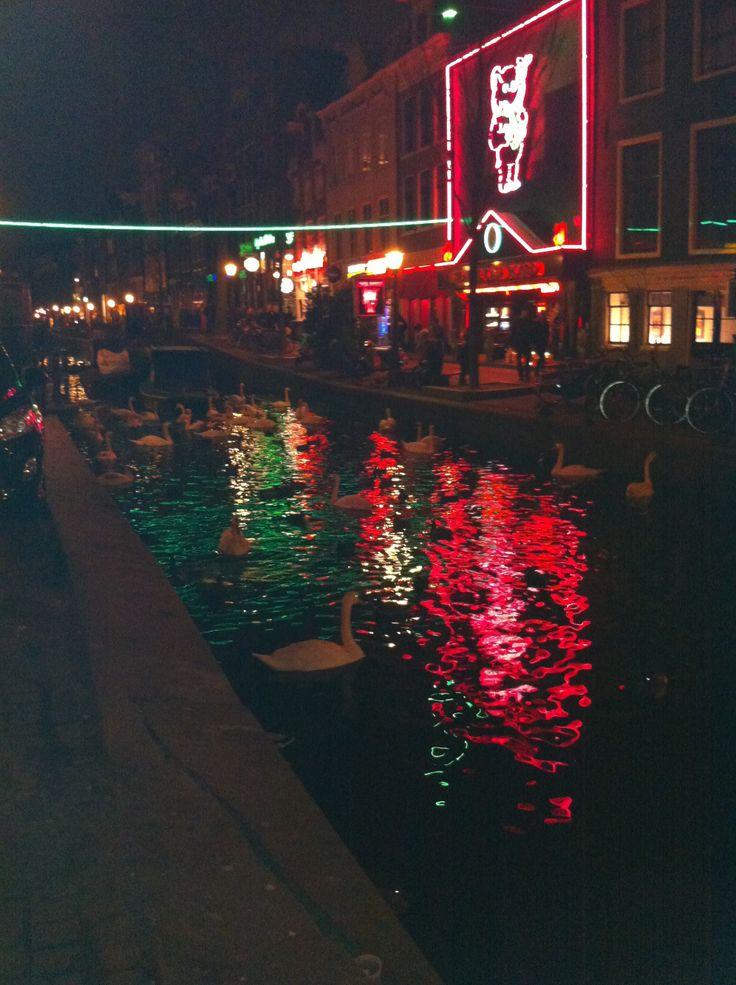 Quartier rouge Amsterdam   Pour le mois d'octobre direction la capitale des Pays-Bas : Amsterdam   #amsterdam #10photos #voyage #weekend #canaux #spacecake #fromage #hollande #paysbas #quartierrouge #velo