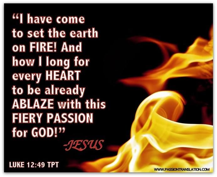 24 Best The Passion Translation Images On Pinterest