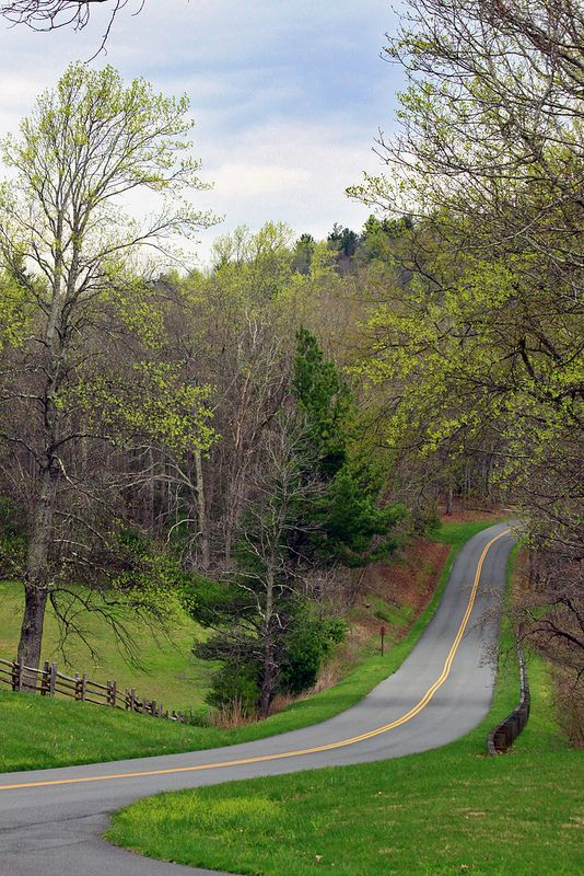 The Blue Ridge Parkway - Beginnings of Spring - USA