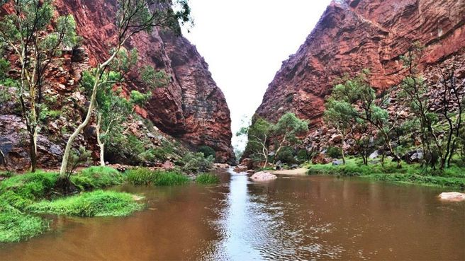 This is what a flood in the desert looks like. Simpsons Gap