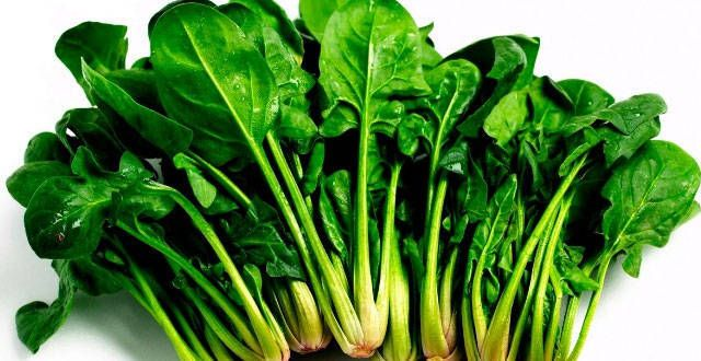 List Of Leafy Vegetables Name In English Telugu Hindi Immune