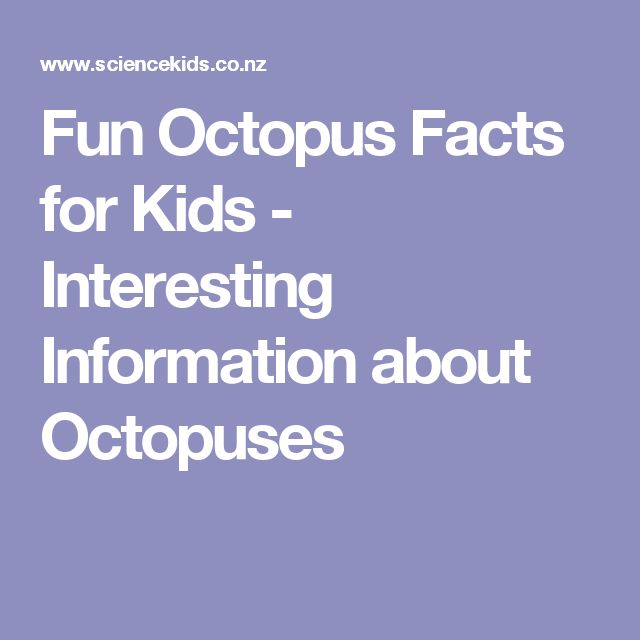 Fun Octopus Facts for Kids - Interesting Information about Octopuses