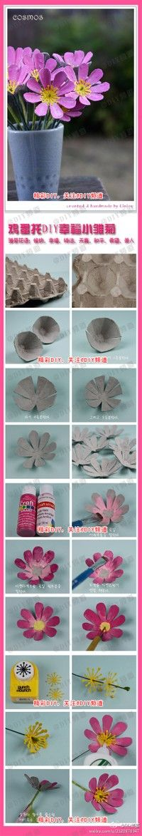 3 D flowers from egg cartons