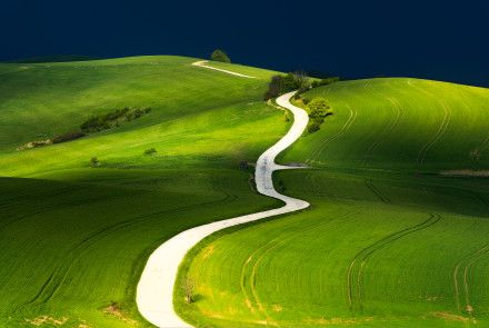 Cesta-životem