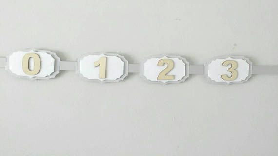 Check out this item in my Etsy shop https://www.etsy.com/ca/listing/535878026/12-month-photo-banner-wooden-numbers
