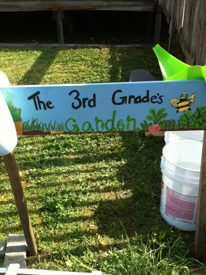 school garden projects and why are they important