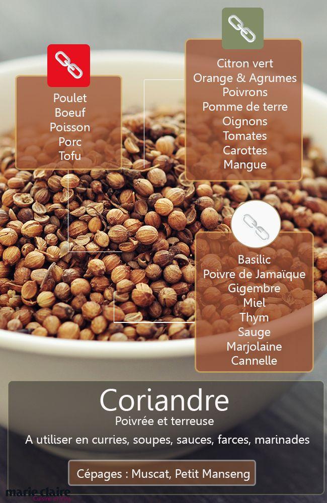 Il y a coriandre et graines de coriandre