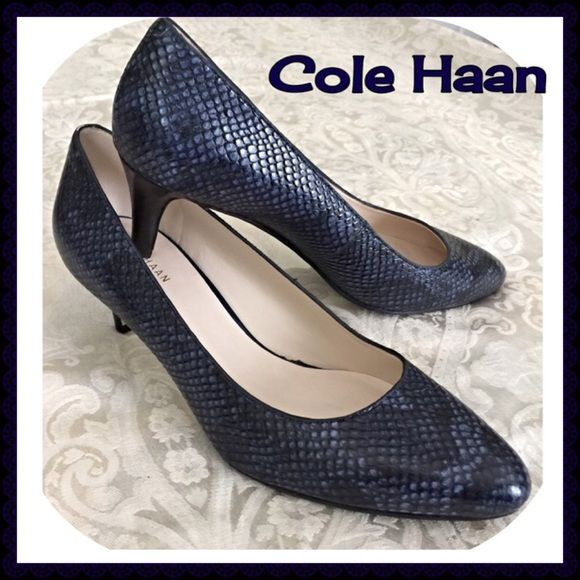 "Firm Price Cole Haan Pumps NWT These Cole Haans are blue, snake embossed leather pumps. 2"" heel, padded insole. They are gorgeous but I usually wear a size 9 (but too big) so I bought the 8.5B ( which are a tad too small....ugh) because they are gorgeous and would go with so many things in my closet!         No trades or Paypal!                                               Price is firm! Cole Haan Shoes"