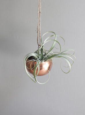 Copper // plant hanger // lifestyle maverikstudio.com.au More