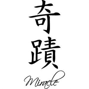 miracle tattoo symbols and chinese on pinterest. Black Bedroom Furniture Sets. Home Design Ideas