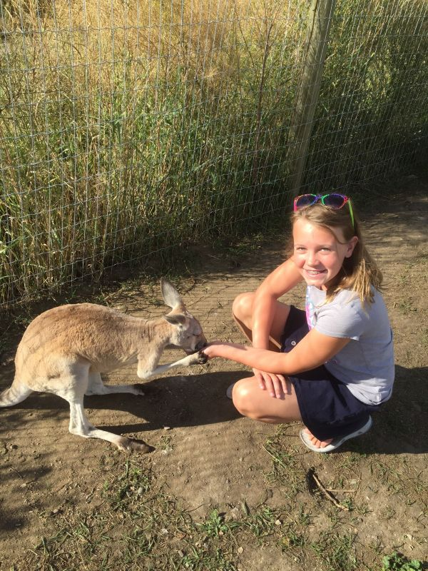 We finally made it to the Kangaroo farm close to our home.  Kangaroo Creek Farms…