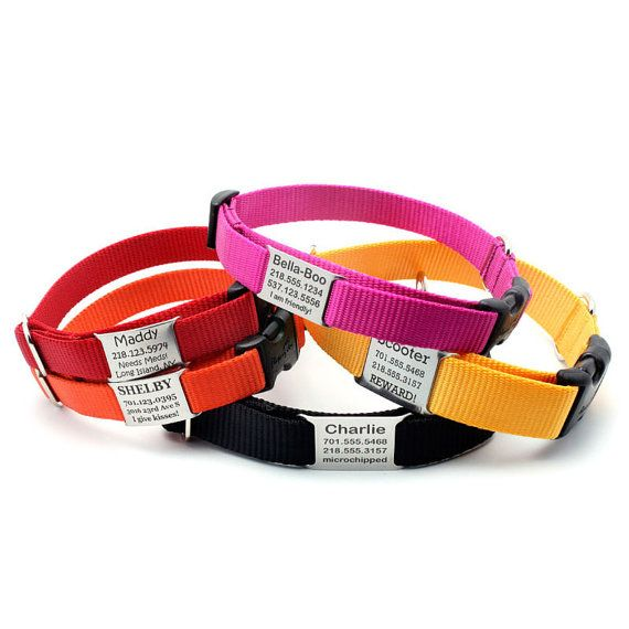 Stealth Personalized Nylon Dog Collar with Laser Engraved Personalized NamePlate Built In 31 dollars, 11 dollar shipping