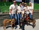 Get Involved | The Jason Debus Heigl Foundation. Help save sick and homeless dogs and cats.