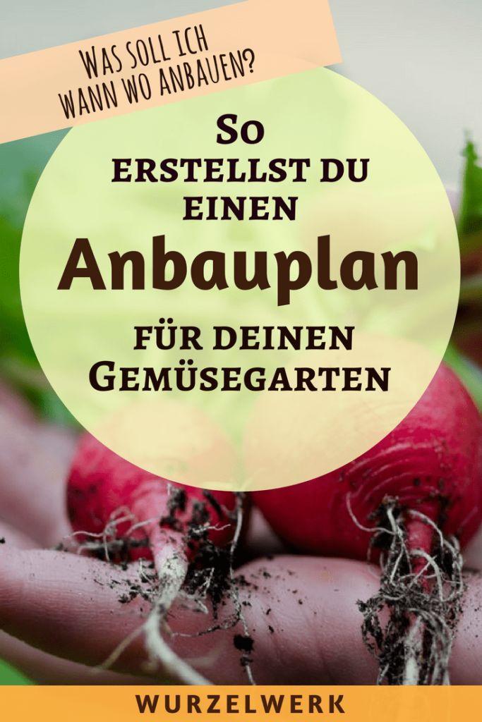 Wie du einen Anbauplan für deinen Gemüsegarten erstellst + Beispielplan
