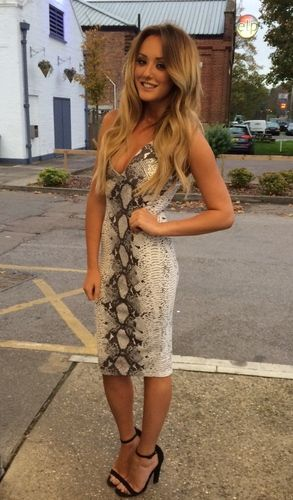 Samantha Snakeskin Dress (As Seen On Charlotte Crosby) - In The Style