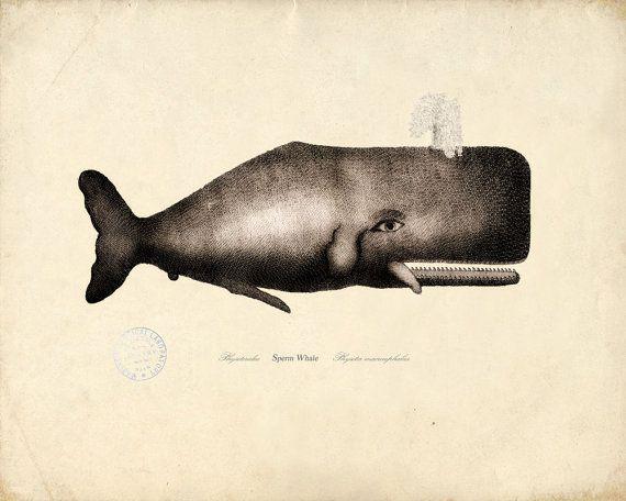 Stunning! Yum sperm whale project fuck