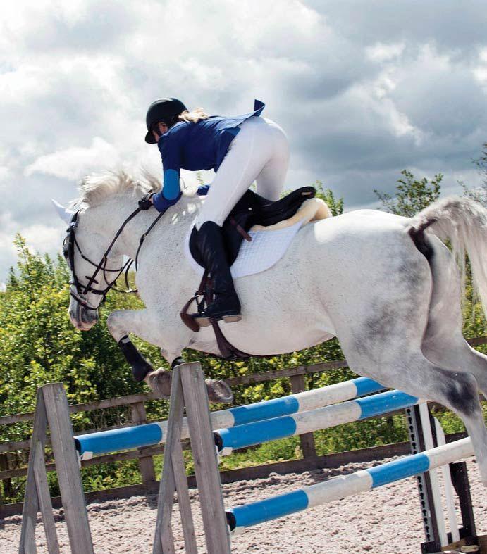 Das #Turniersakko für Damen ist eine wunderschöne, #blaue #Reitjacke, die man auch im Alltag toll kombinieren kann. Durch das atmungsaktive Stretchmaterial mit zwei komfortablen rückwärtigen Schlitzen ist die #Bewegungsfreiheit gewährleistet.  #pferd #springreiten #caldene #englishequestrian #english #equestrian www.englishequestrian.com