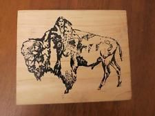 Wild Buffalo & Native American Woman rubber stamp Arizona Stamps Too!