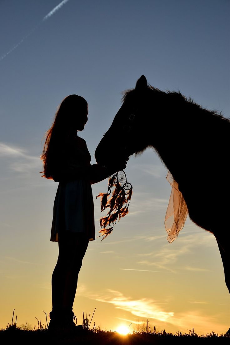 Rêver de chevaux