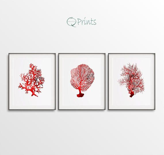 Coral Triptych Set of 3 Prints Digital Coral Seafan