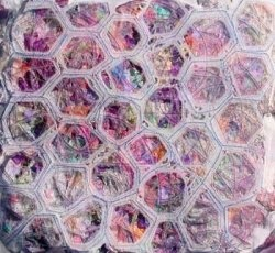 Cell Structure Textiles - by MeltedRachel