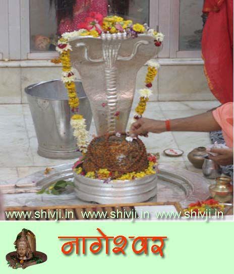 nageshwar_jyotirling.jpg (464×543)