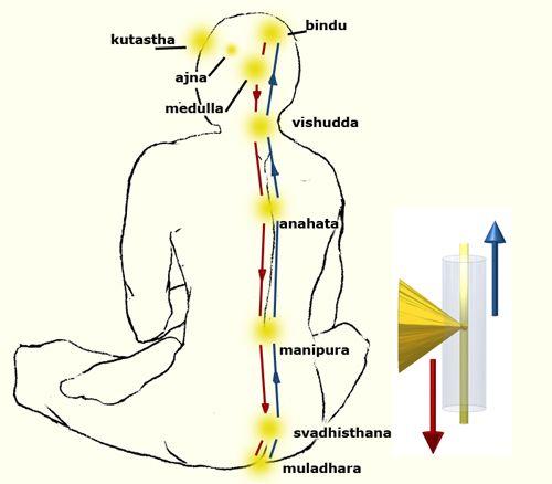 Risultati immagini per bindu kundalini