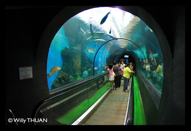 Not really big but always interesting, especially on a rainy day: Phuket Aquarium - http://phuket101.net/2011/04/phuket-aquarium.html
