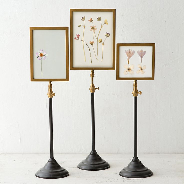 Standing specimen frame card crafts pedestal and vases for How to display picture frames on a table