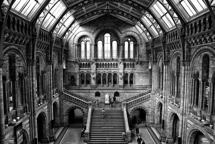 Artista: Gustavo Costa Neves  Fotografia  Fundado em 1881, o Museu de História Natural de Londres é um dos três principais do mundo. Acolhe inúmeras coleções de ciências da vida e da terra, compreendendo cerca de 70 milhões de espécies ou itens. Existe também um jardim  de vida saúdavel nativas de fauna e flora.