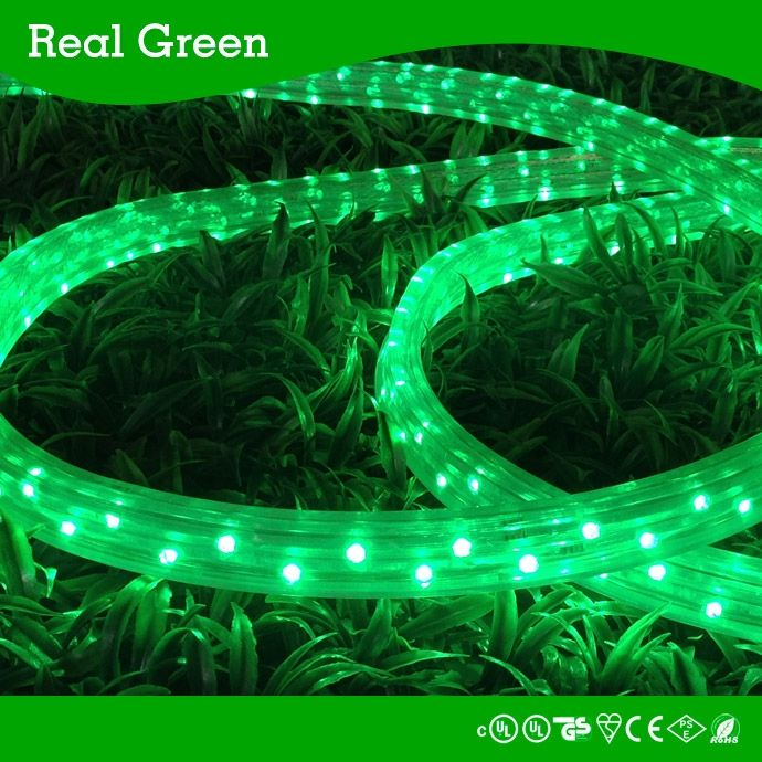 79 best led rope light js images on pinterest rope lighting cob 150ft 220v flat green led rope light220vflatgreen led rope light aloadofball Images