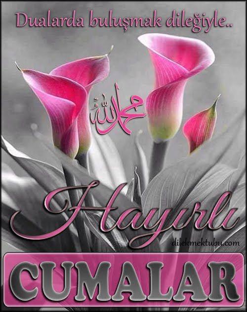 Allah'ın Rahmeti ve Bereketi üzerinize olsun. Dostsuz dünya olmaz imiş, dost duasız kalmaz imiş. Duanız da bulunabilmek ümidi...