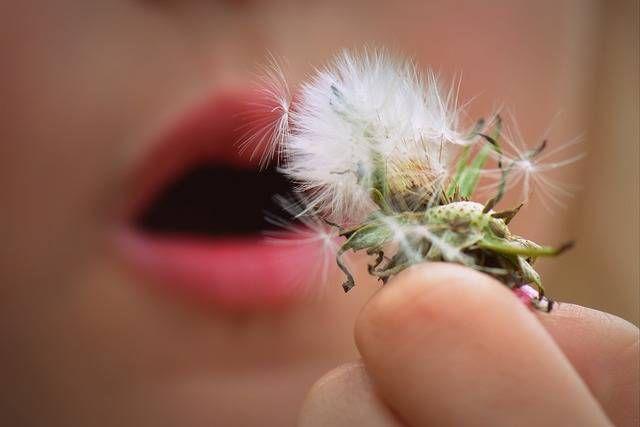 Prévenir les allergies du printemps