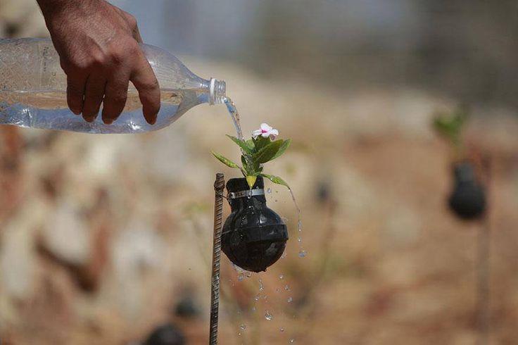 Bu Dünya, Filistin'li bir kadının İsrail'in gaz bombalarında çiçek yetiştirdiği bir Dünya..  ***  Burası dünya yahu, burası bu kadar işte.  — Ah Muhsin Ünlü