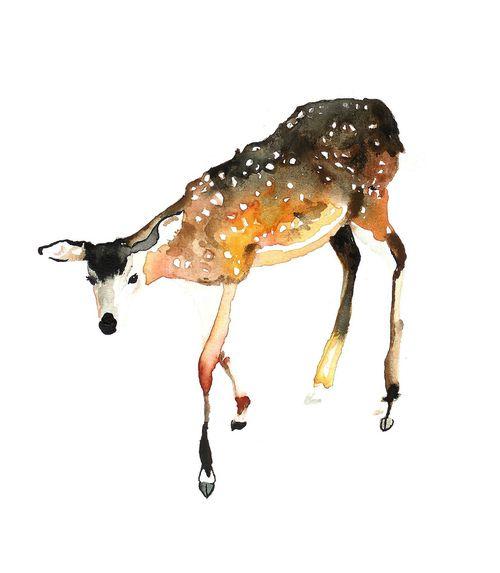 rådjur (by mon dieu!): Watercolor, My God, Animals, Artists Drawings, Illustrations, Beautiful Art Birds, Art Illustration, Art Photos, Deer