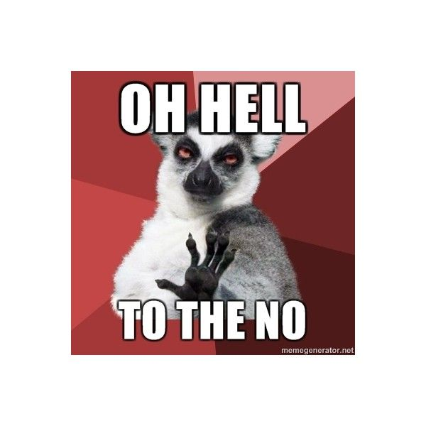 Funny Meme Saying No : Best lemurs images on pinterest funny stuff ha