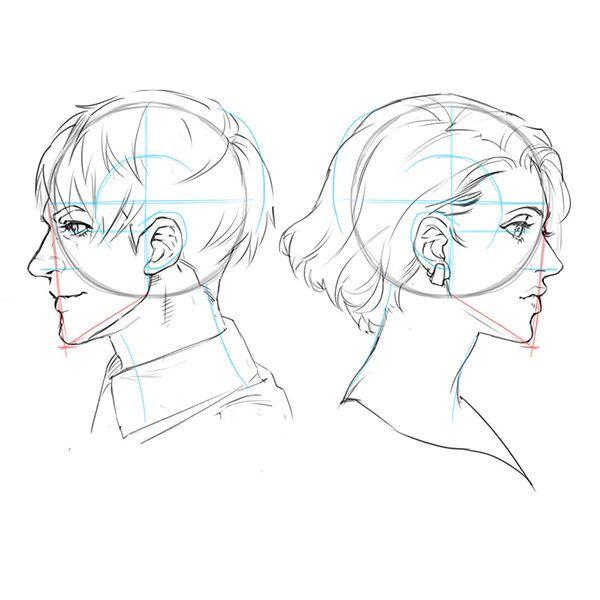 基本から徹底解説 正面顔と横顔の描き方 いちあっぷ アートリファレンス 頭のスケッチ 描画チュートリアル