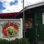 Paco's Tacos - Best Fish Tacos on Kauai