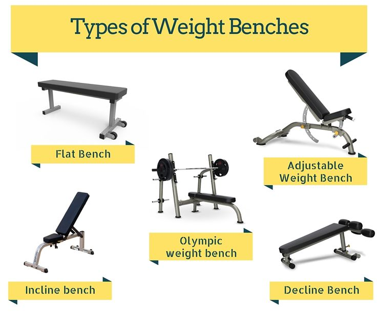 Awesome Bench Types Part - 5: The Best Adjustable Workout Weight Bench Will Help You To Gain A High-level  Of Fitness. Check This List To Get The Best Weight Bench For Your Gym.