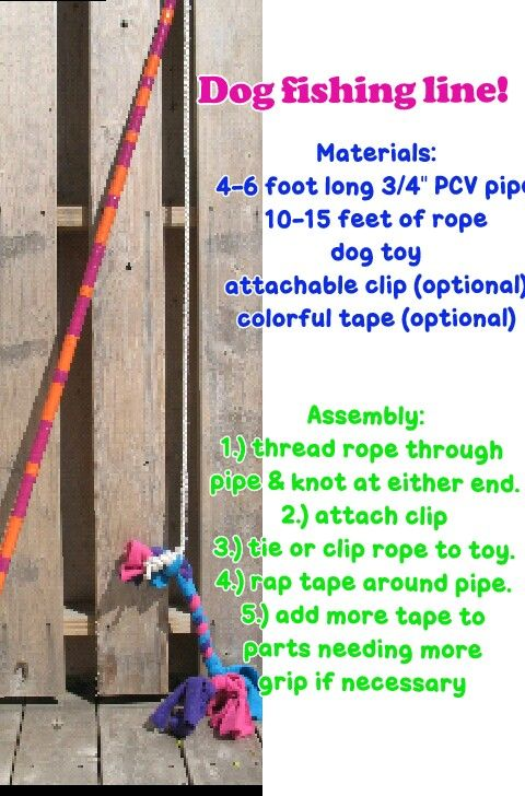 Make your own dog fishing line things for my dog for Create your own fish