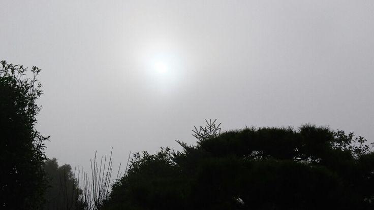 霧のなかの初日の出