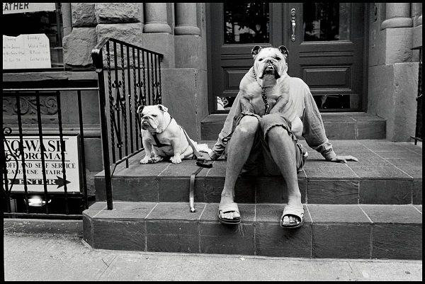 """Wystawa zatytułowana """"Personal Best for Leica"""" to zbiór 50, wybranych przez samego autora, prac zrobionych Leiką na czarno-białym filmie. Jest to wspaniałe świadectwo 60letniej przyjaźni pomiędzy artystą i jego aparatem. Więcej o wystawie znajdziecie na http://soperlage.com/elliott-erwitt-personal-best-for-leica/"""