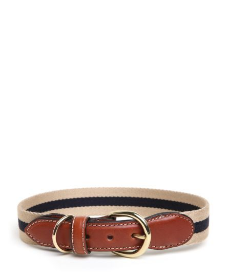 Jack Spade | Surcingle Dog Collar