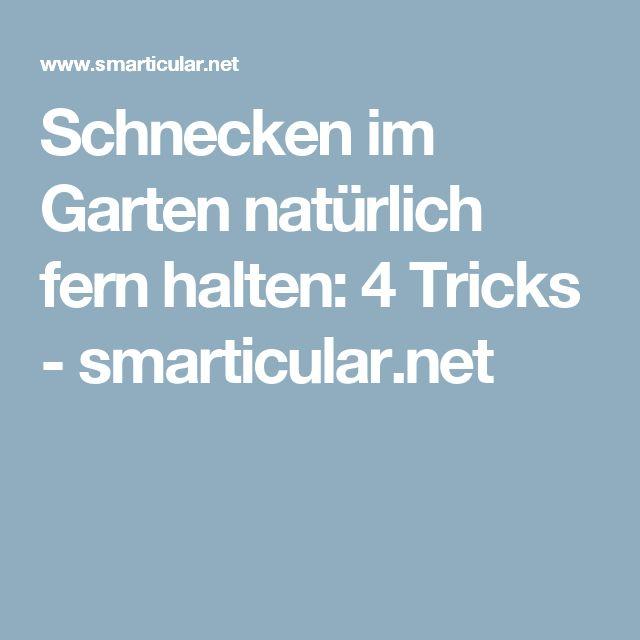 Schnecken im Garten natürlich fern halten: 4 Tricks - smarticular.net