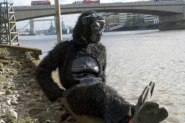 Protesting policeman in gorilla suit is banned from swimming in the Thames